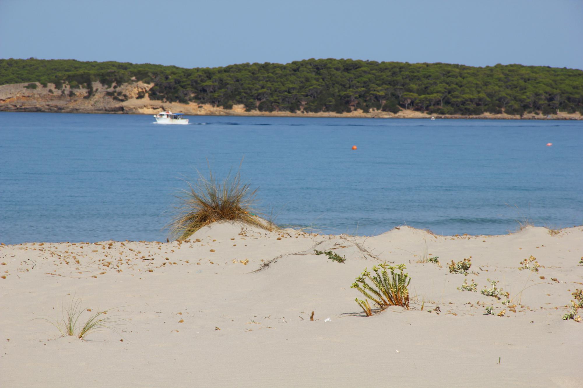 Porto Pino Spiaggia e dune di sabbia