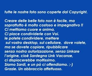 copyright_blu